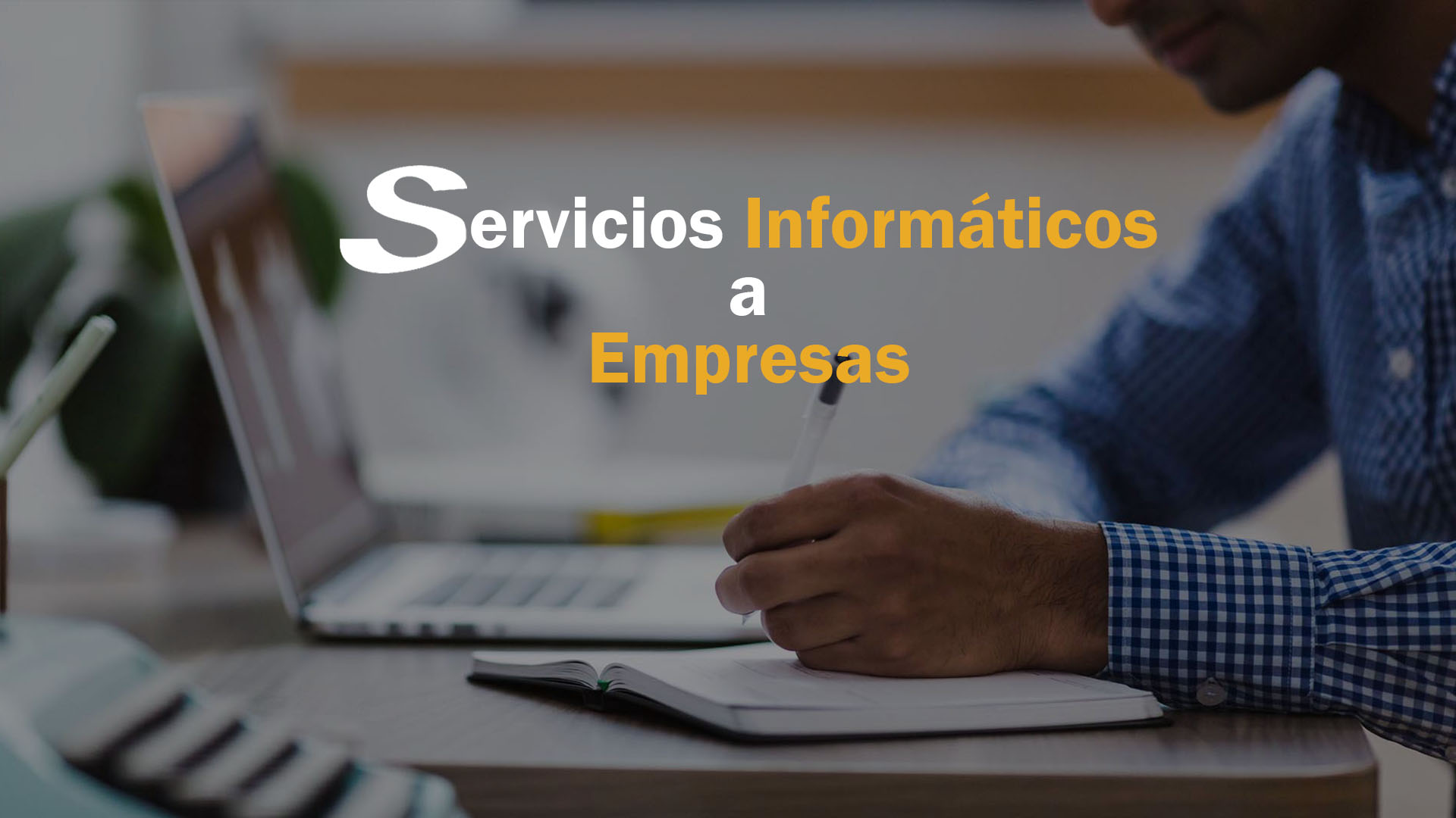 Servicios Informáticos a Empresas- SilvaniapC